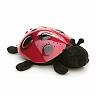 closeout toy ladybug