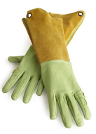 wholesale closeout Garden Glove