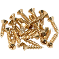wholesale closeout gold screws